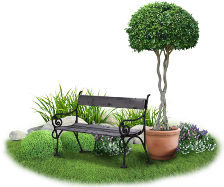 zahrada_